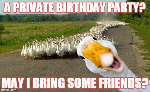 funny birthday meme