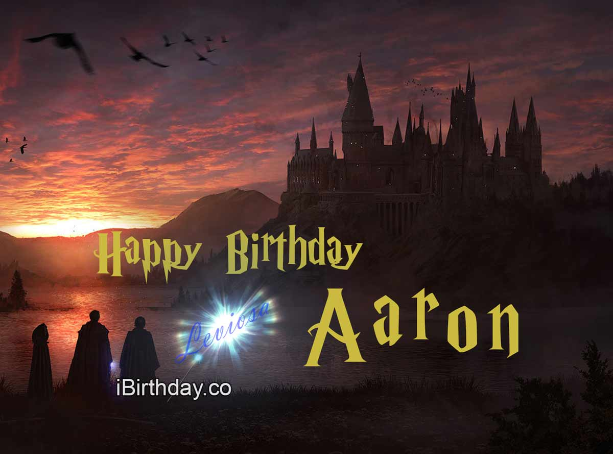 Aaron Harry Potter Birthday Meme