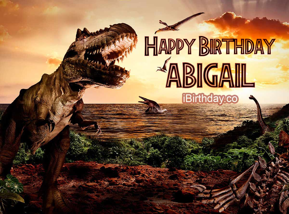 Abigail Basketball Happy Birthday