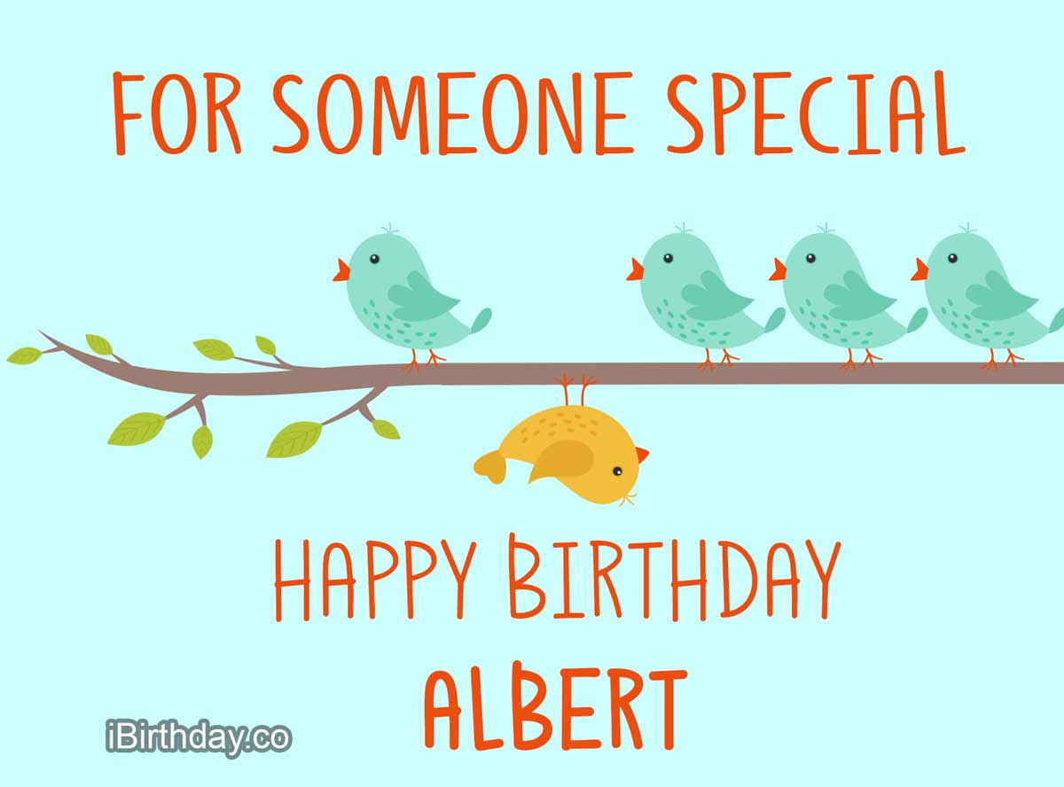 Albert Birds Happy Birthday Wish