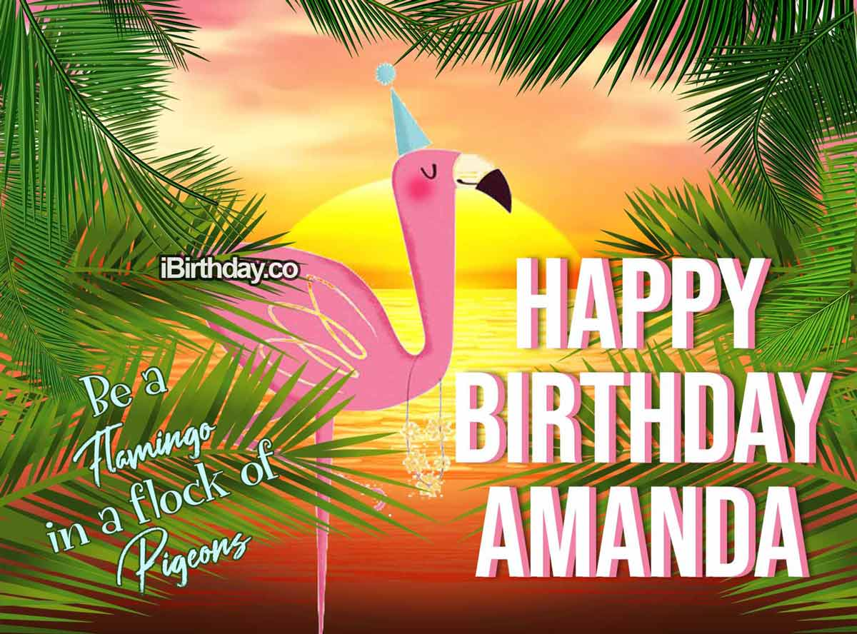Amanda Dog Happy Birthday