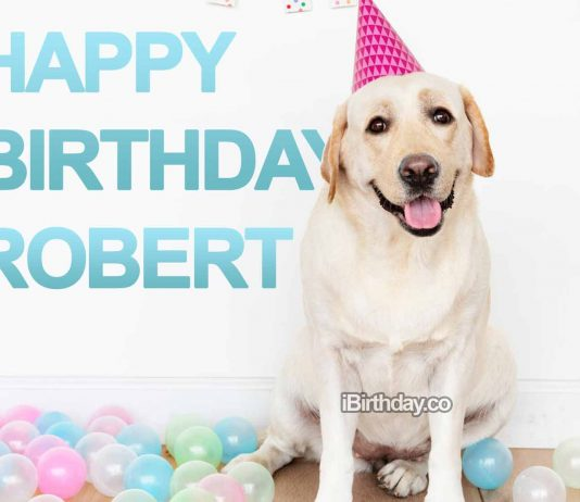 Happy Birthday Robert - Dog