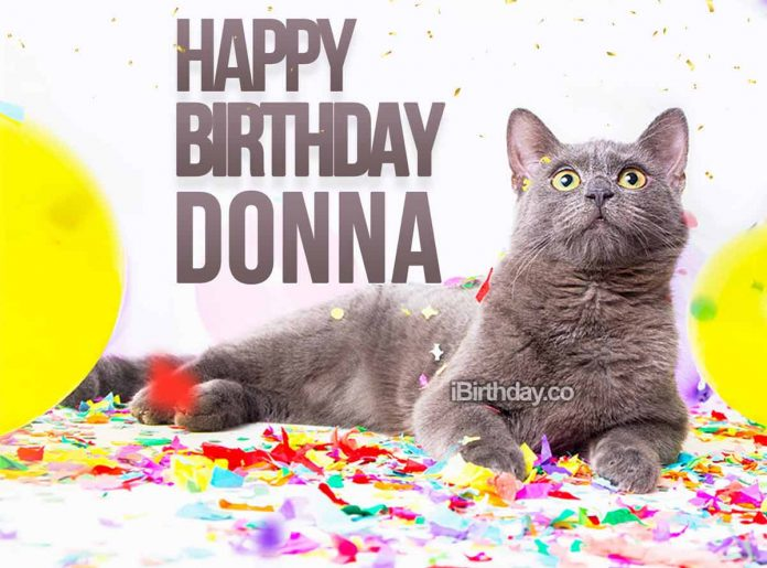 Donna Cat Happy Birthday