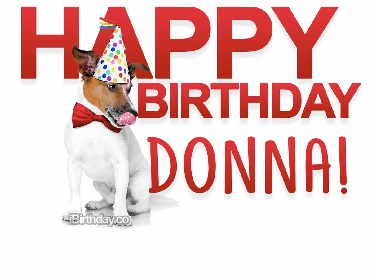 Donna Dog Birthday Meme