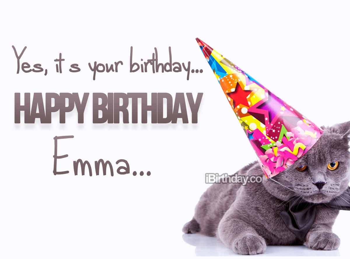 Emma Birthday Cat