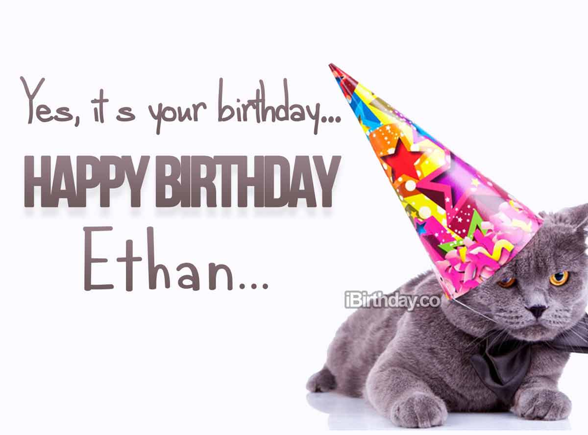 Ethan Cat Birthday Meme