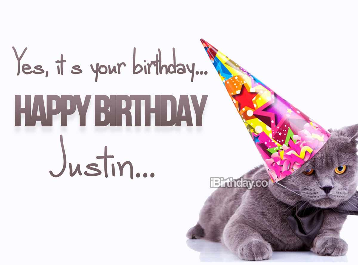 Justin Cat Birthday Meme