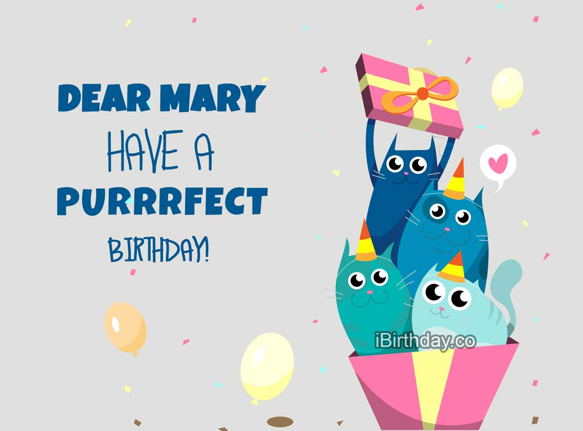 Mary Happy Birthday Cat