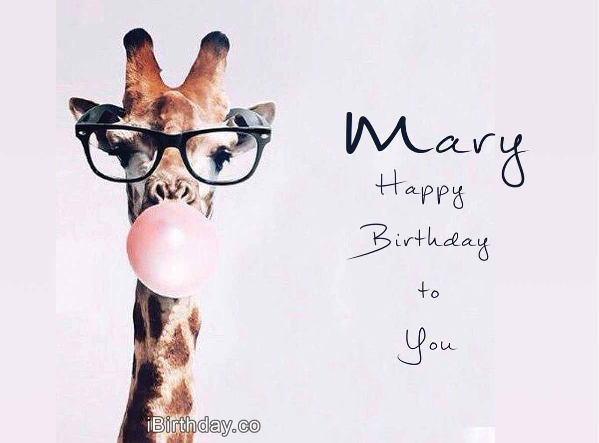 Mary Giraffe Birthday Meme