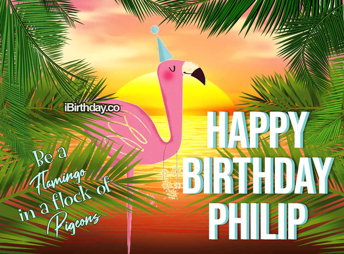 Philip Flamingo Birthday Quote
