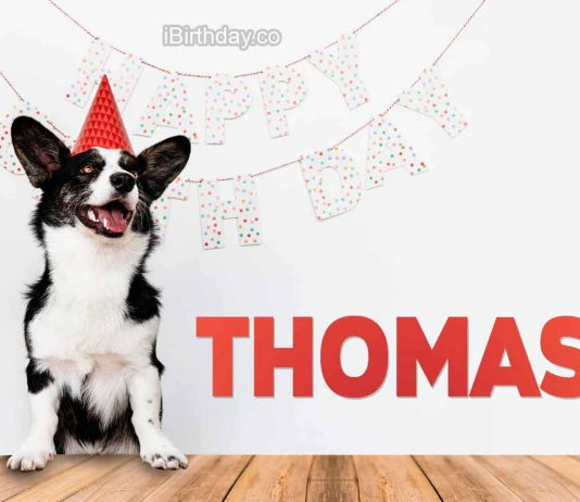 Thomas Dog Happy Birthday