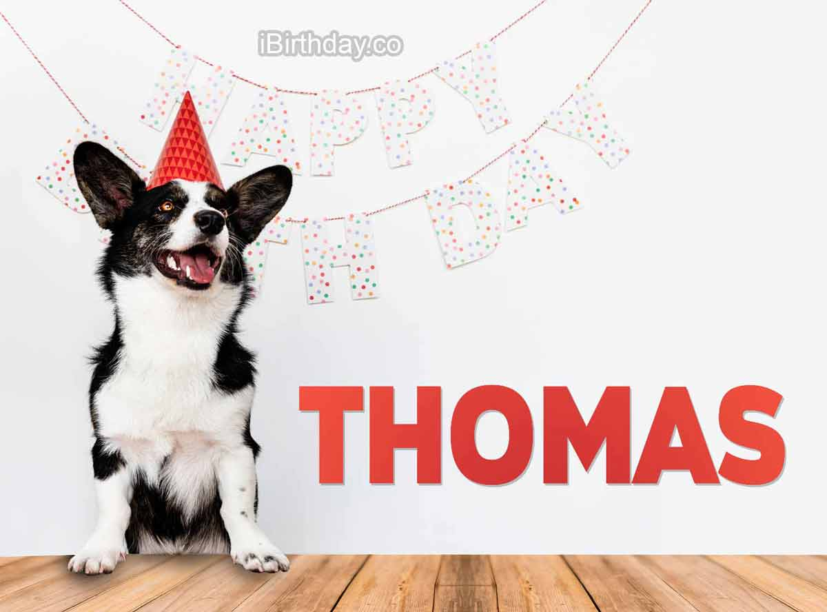 HAPPY BIRTHDAY THOMAS– MEMES, WISHES AND QUOTES