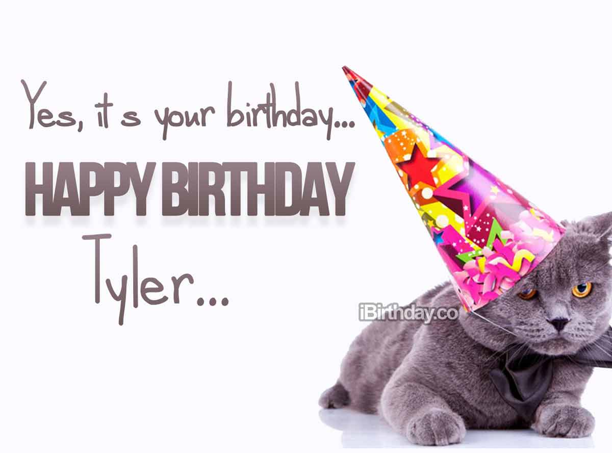Tyler Cat Birthday Wish