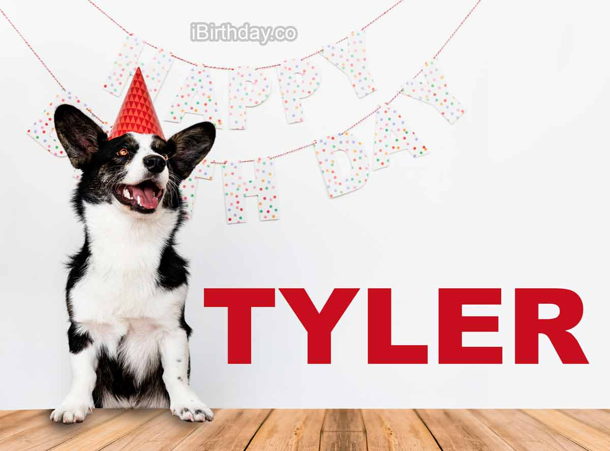 Tyler Dog Birthday Wish