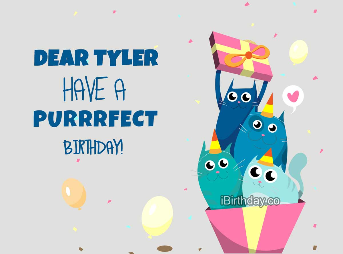 Tyler Happy Birthday Cats