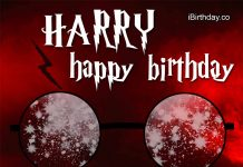 Harry Harry Potter Birthday Wish