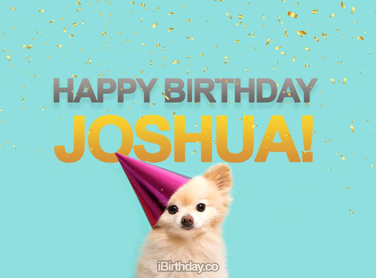 Joshua Dog Birthday Meme