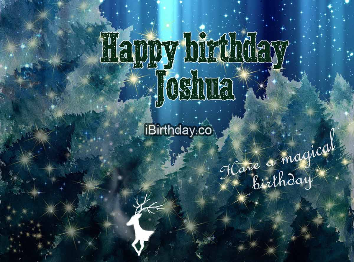 Joshua Magic Birthday Wish