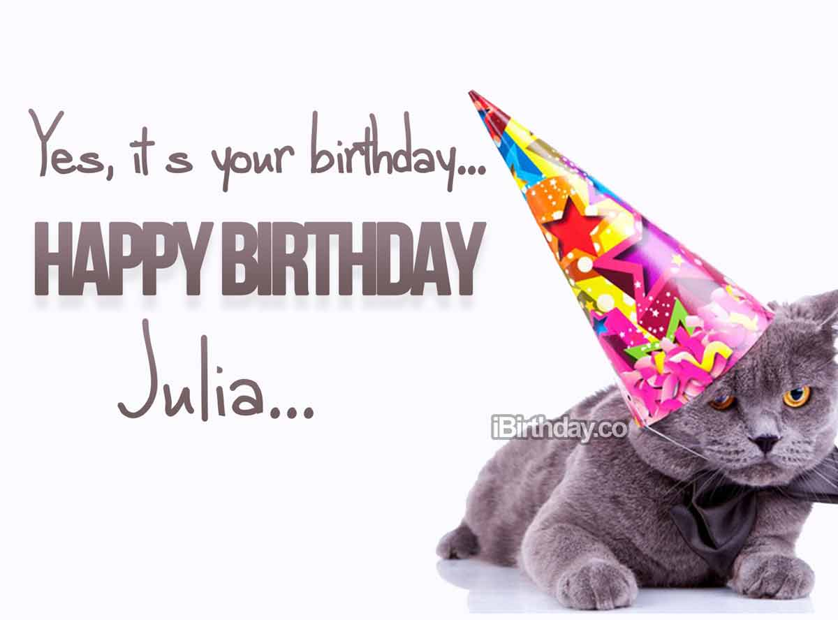 Julia Cat Birthday Wish