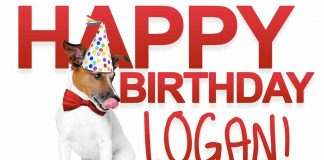 Logan Dog Birthday Meme