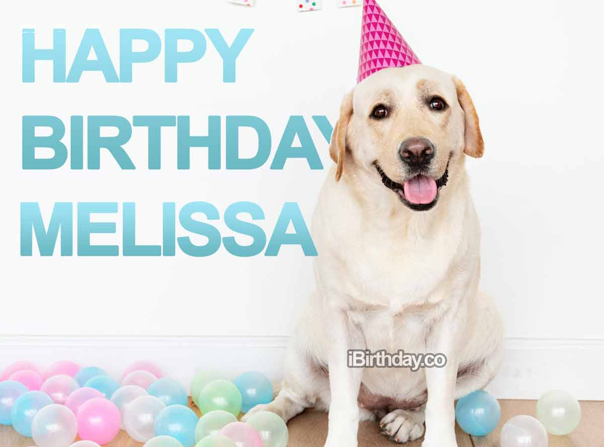 Melissa Dog Birthday Wish
