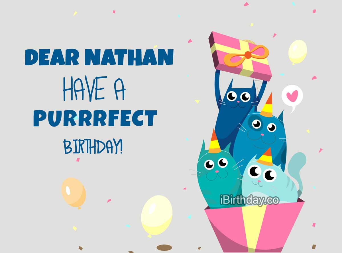 Nathan Cats Birthday Meme