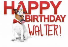 Walter Dog Happy Birthday Meme