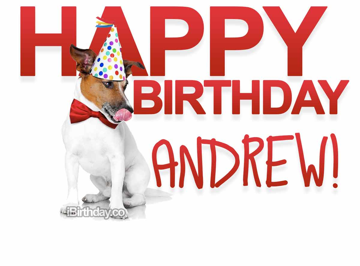 Andrew Dog Birthday Meme