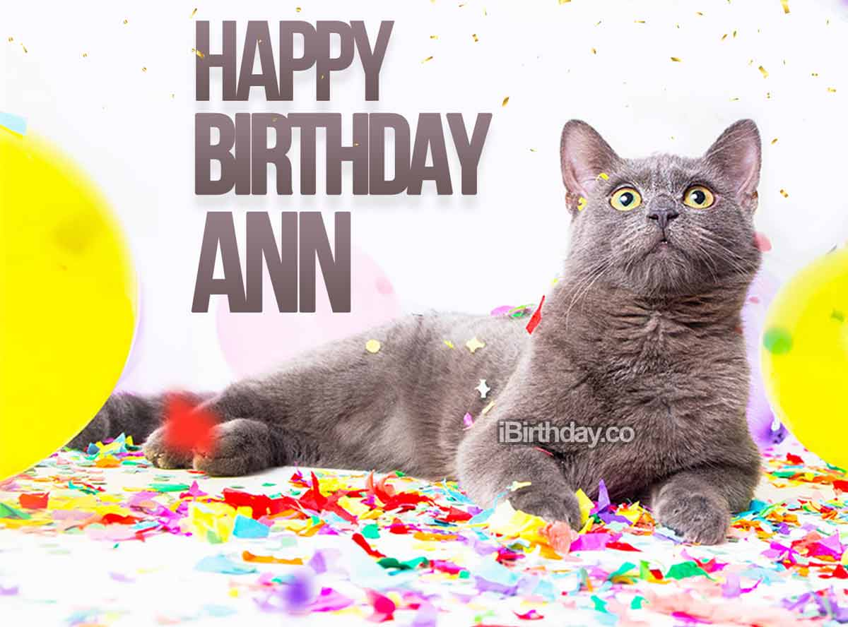 Ann Birthday Cat Meme