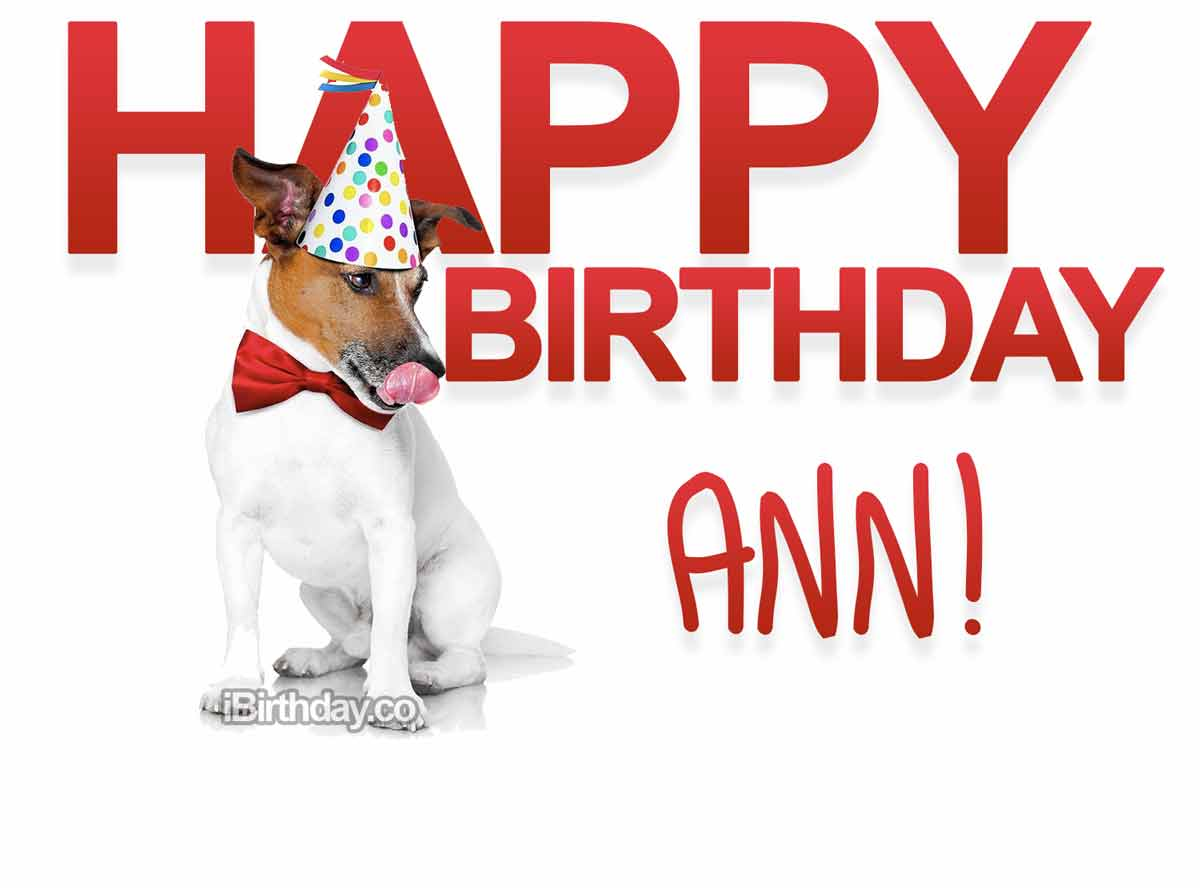 Ann Dog Birthday Meme