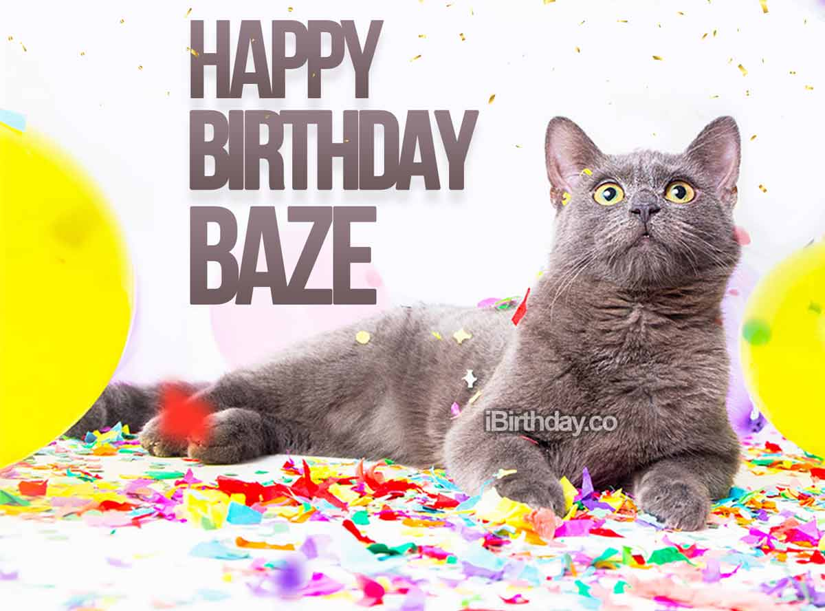 Baze Birthday Cat Meme