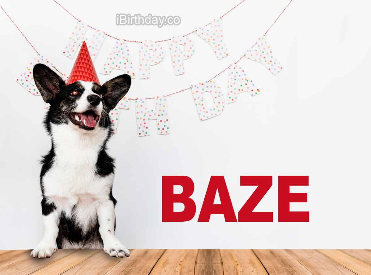 Baze Dog Happy Birthday Wish