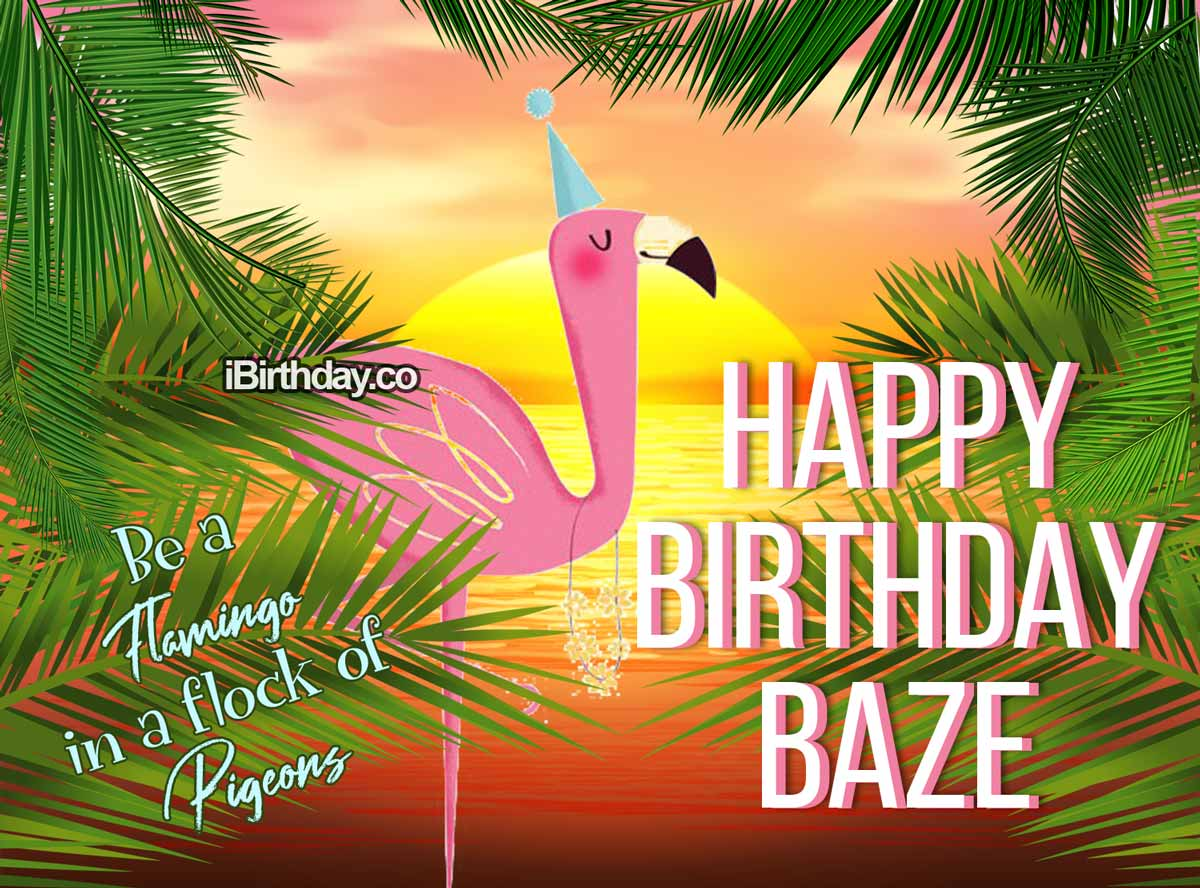 Baze Flamingo Birthday Meme