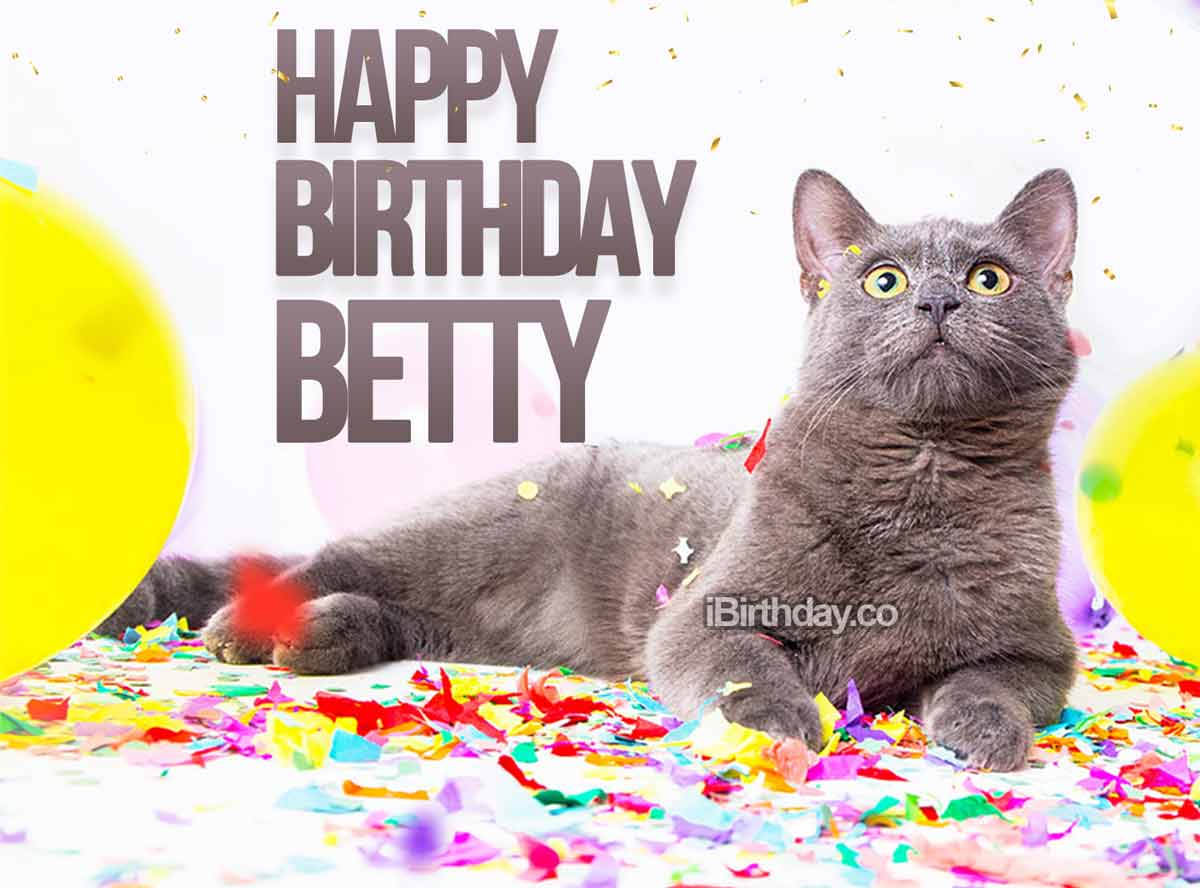 Betty Cat Birthday Meme