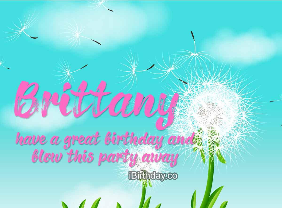 Brittany Dandelion Birthday Wish