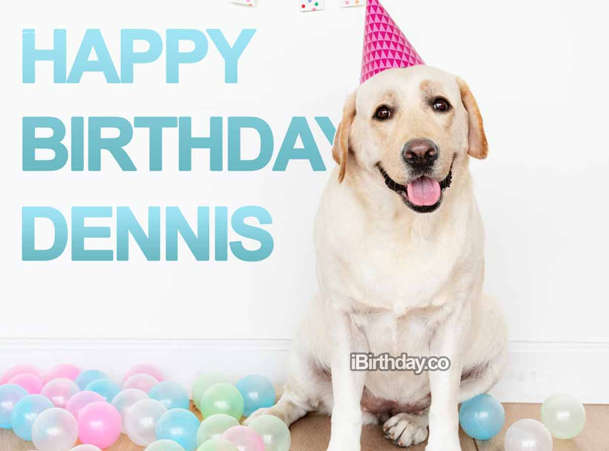 Dennis Cute Dog Birthday Wish