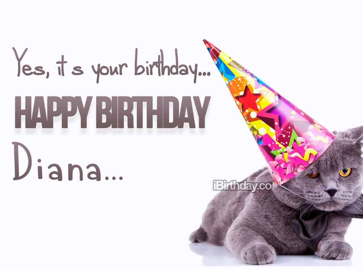 Diana Crazy Cat Birthday Meme