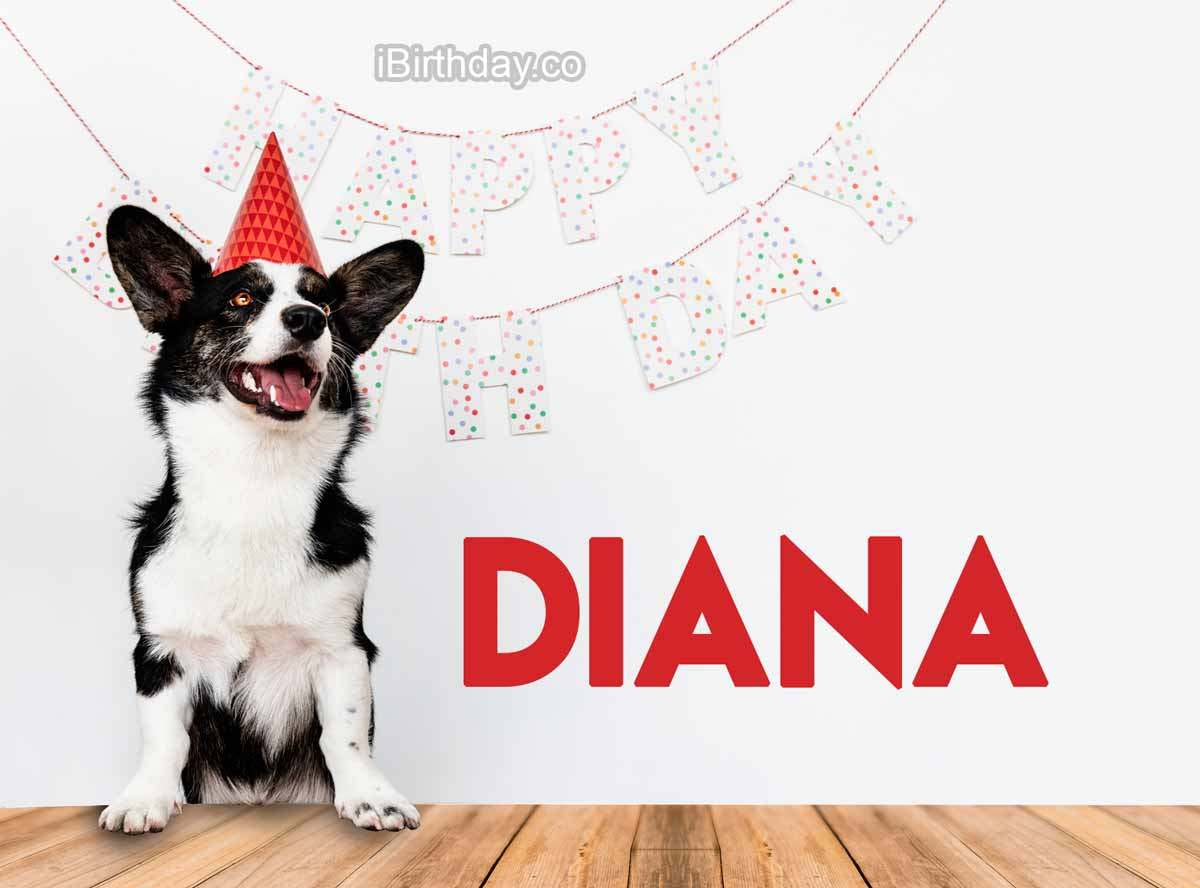 Diana Dog Birthday Meme