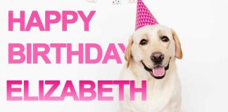 Elizabeth Cute Dog Birthday Wish
