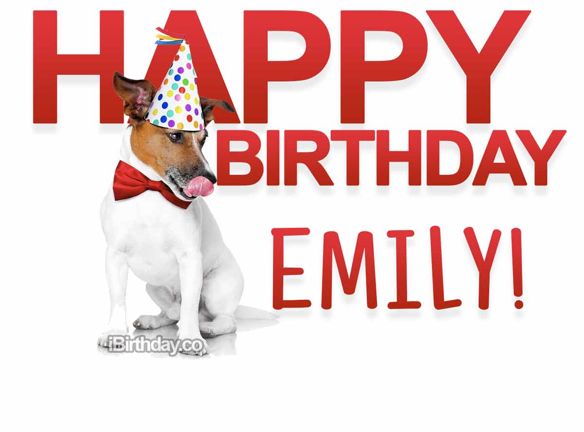 Emily Dog Birthday Meme