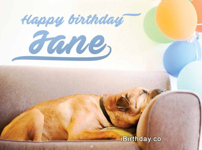 Jane Dog Happy Birthday Meme