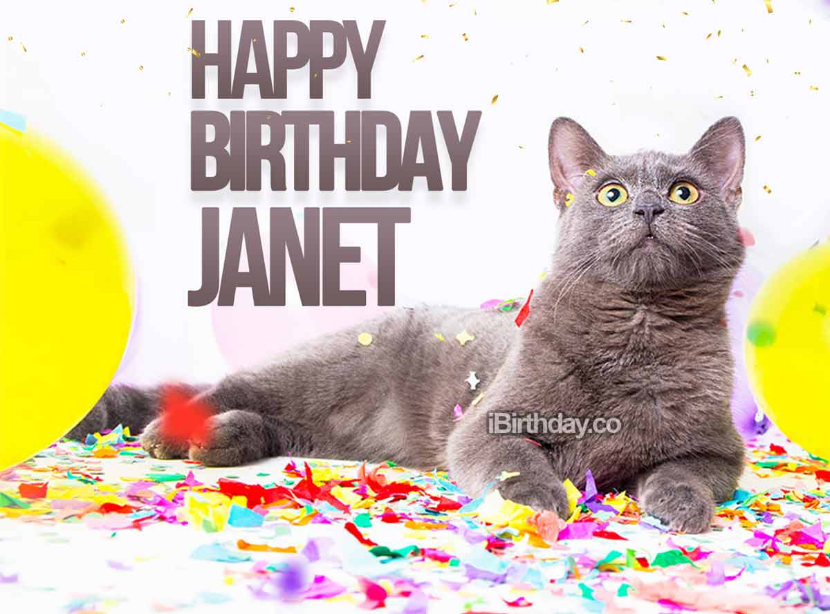 Janet Cat Birthday Meme