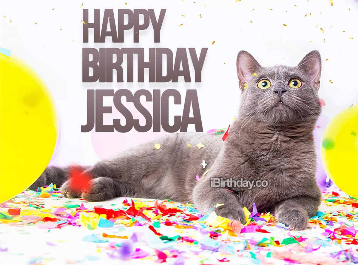 Jessica Cat Happy Birthday
