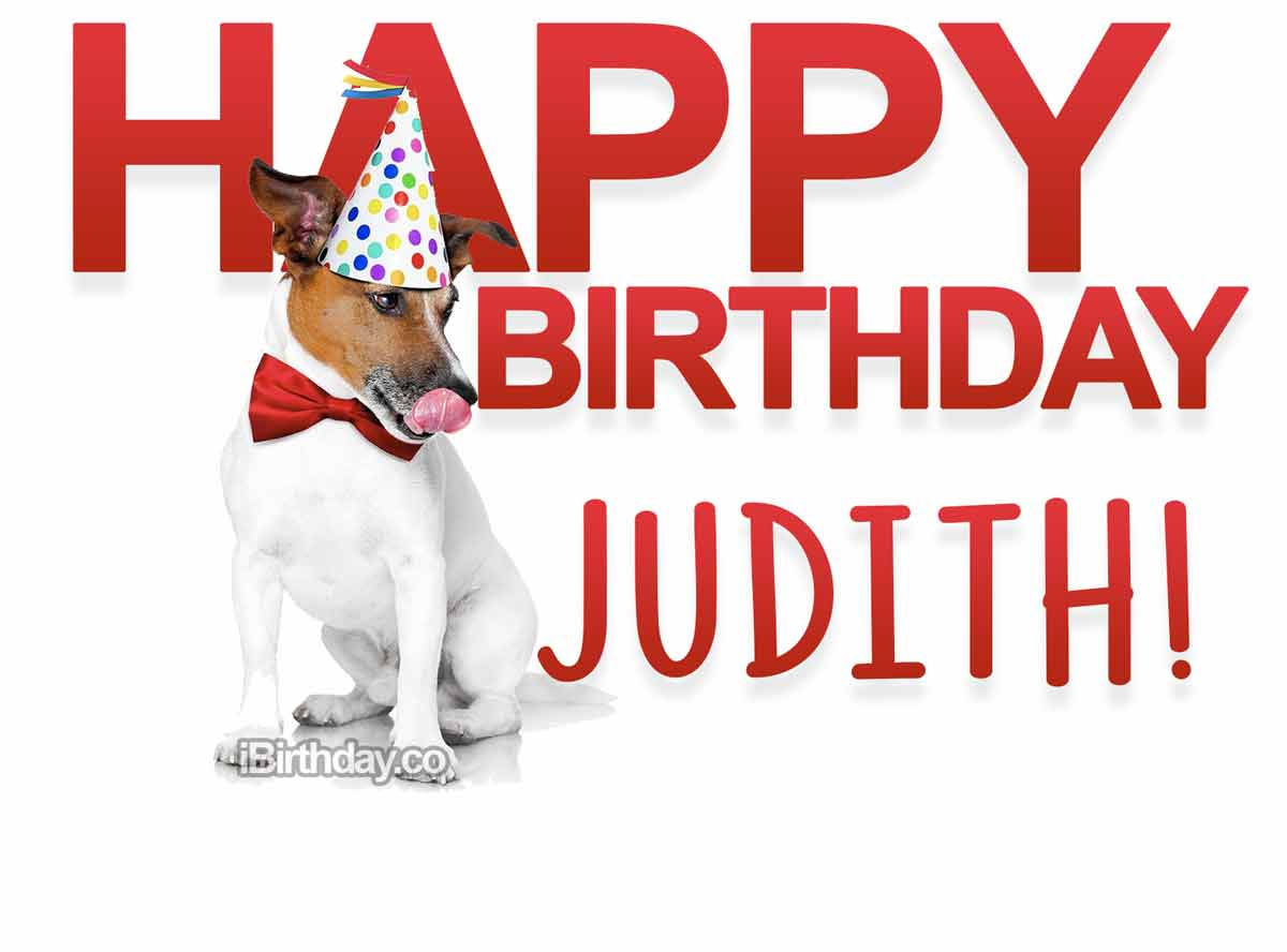 Judith Dog Birthday Meme