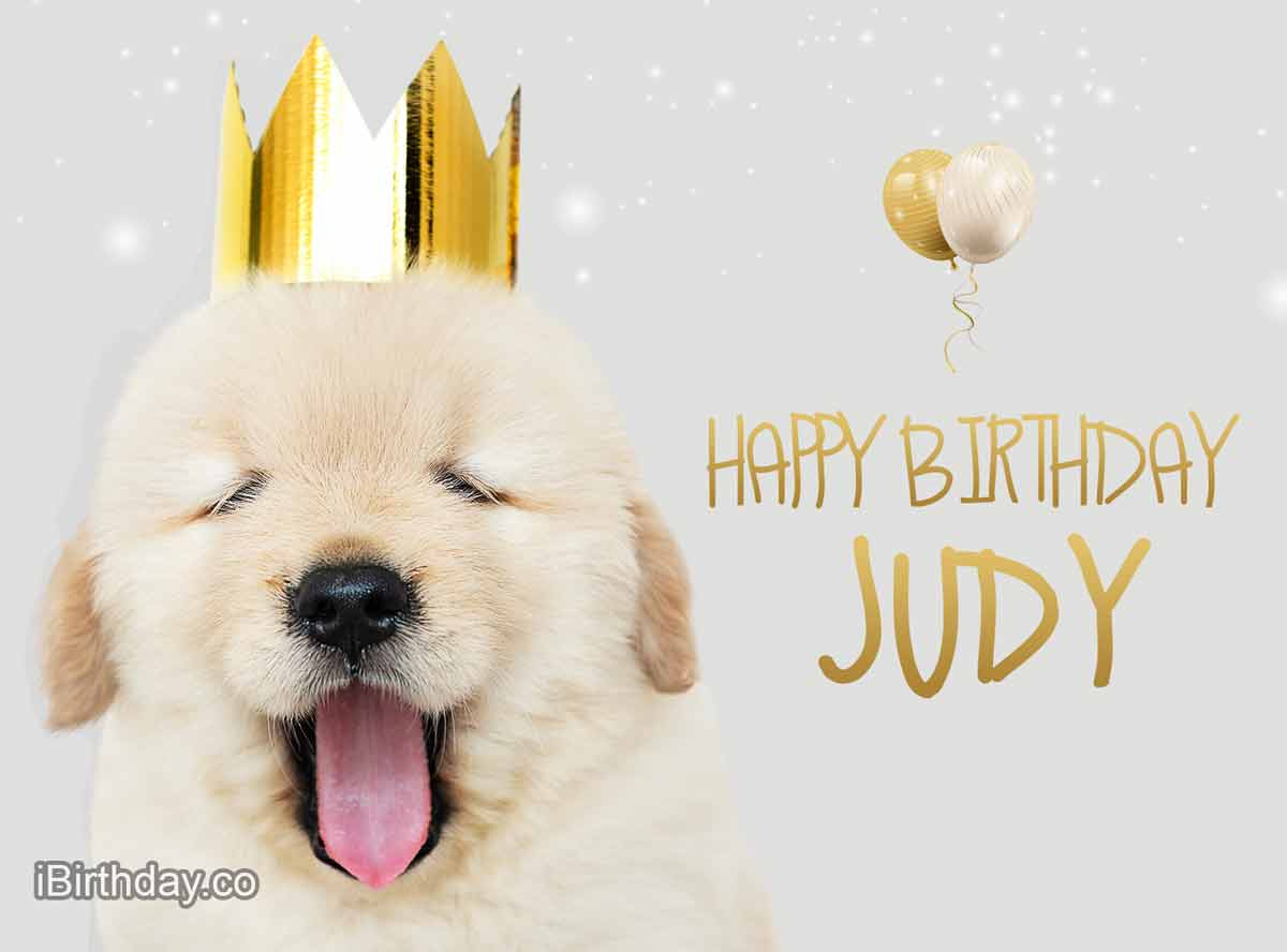 Judy Dog Birthday Meme