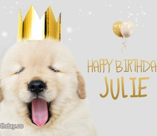 Julie Dog Birthday Meme