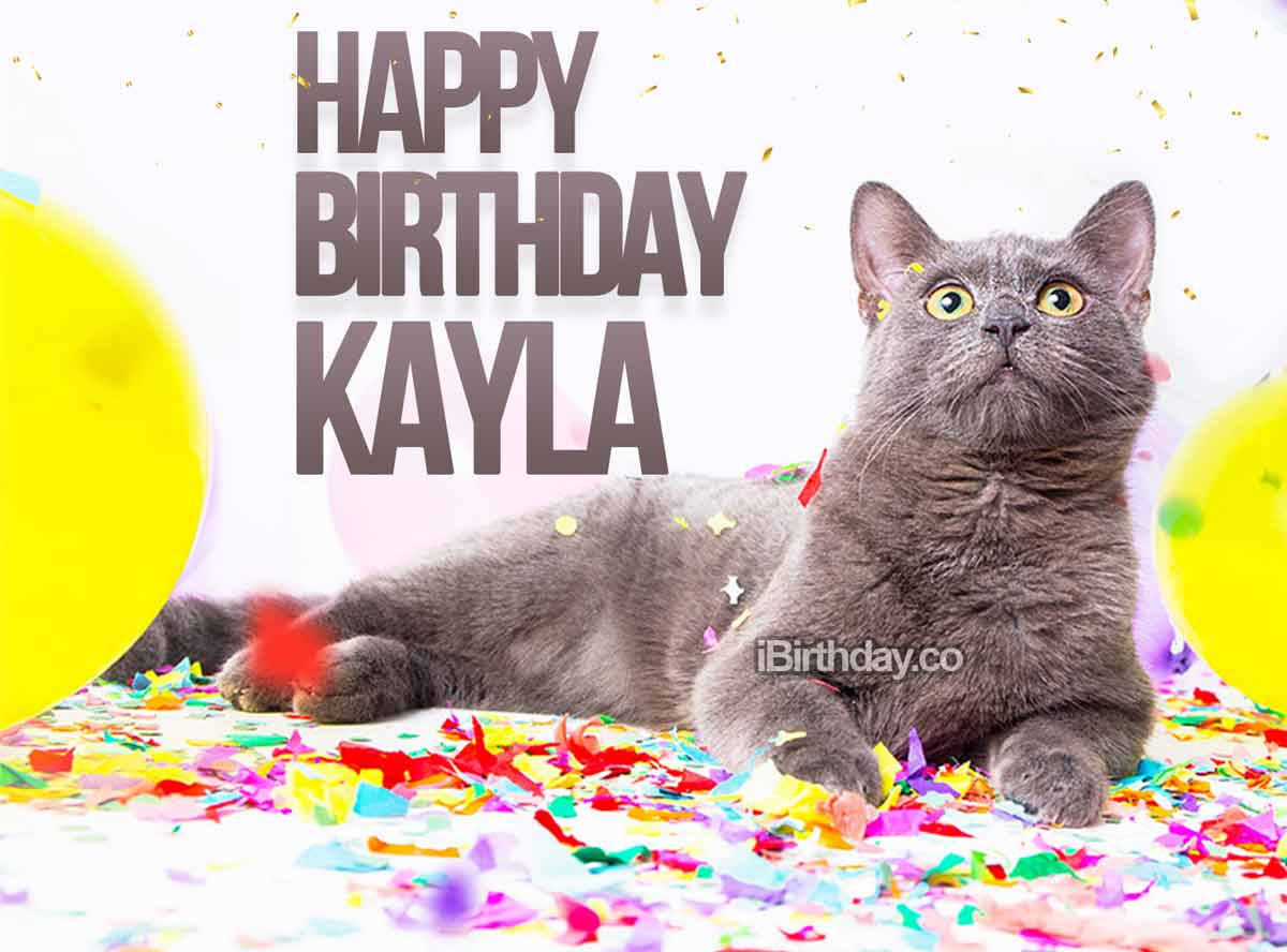 Kayla Birthday Cat Meme