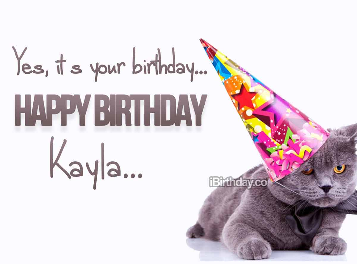 Kayla Cat Birthday Wish