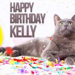 Kelly Birthday Cat Meme