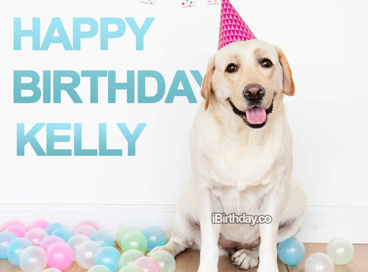 Kelly Dog Birthday Wish